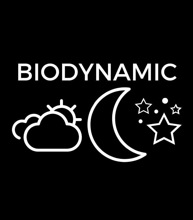 Biodynamic Shiraz 2014